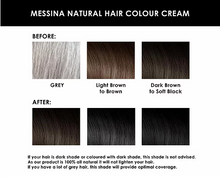 Load image into Gallery viewer, Messina Natural Hair Colour Cream DARK BROWN 250g