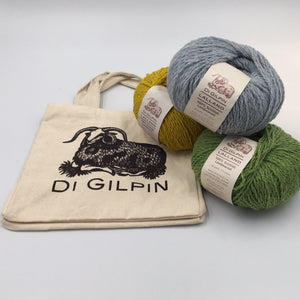 Di Gilpin Project Bag