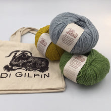 Load image into Gallery viewer, Di Gilpin Project bag and wool