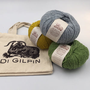 Di Gilpin Project bag and wool