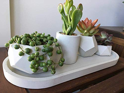Geometric succulent planter set of 4 - Concrete plant pot for houseplants