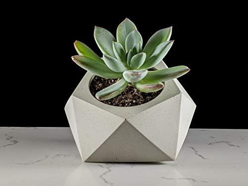 Tilting geometric succulent planter made of concrete