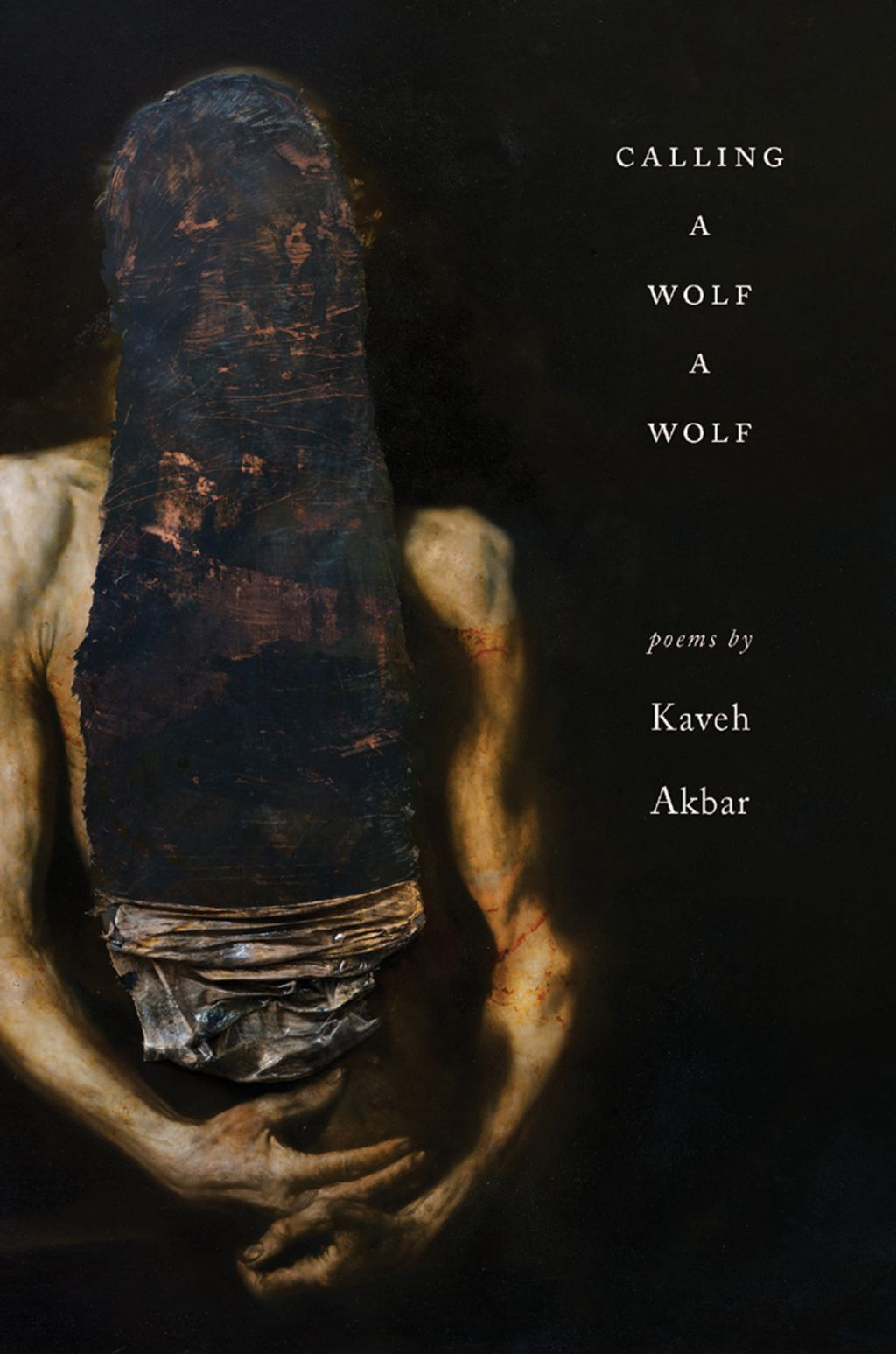 Calling a Wolf a Wolf: Poems