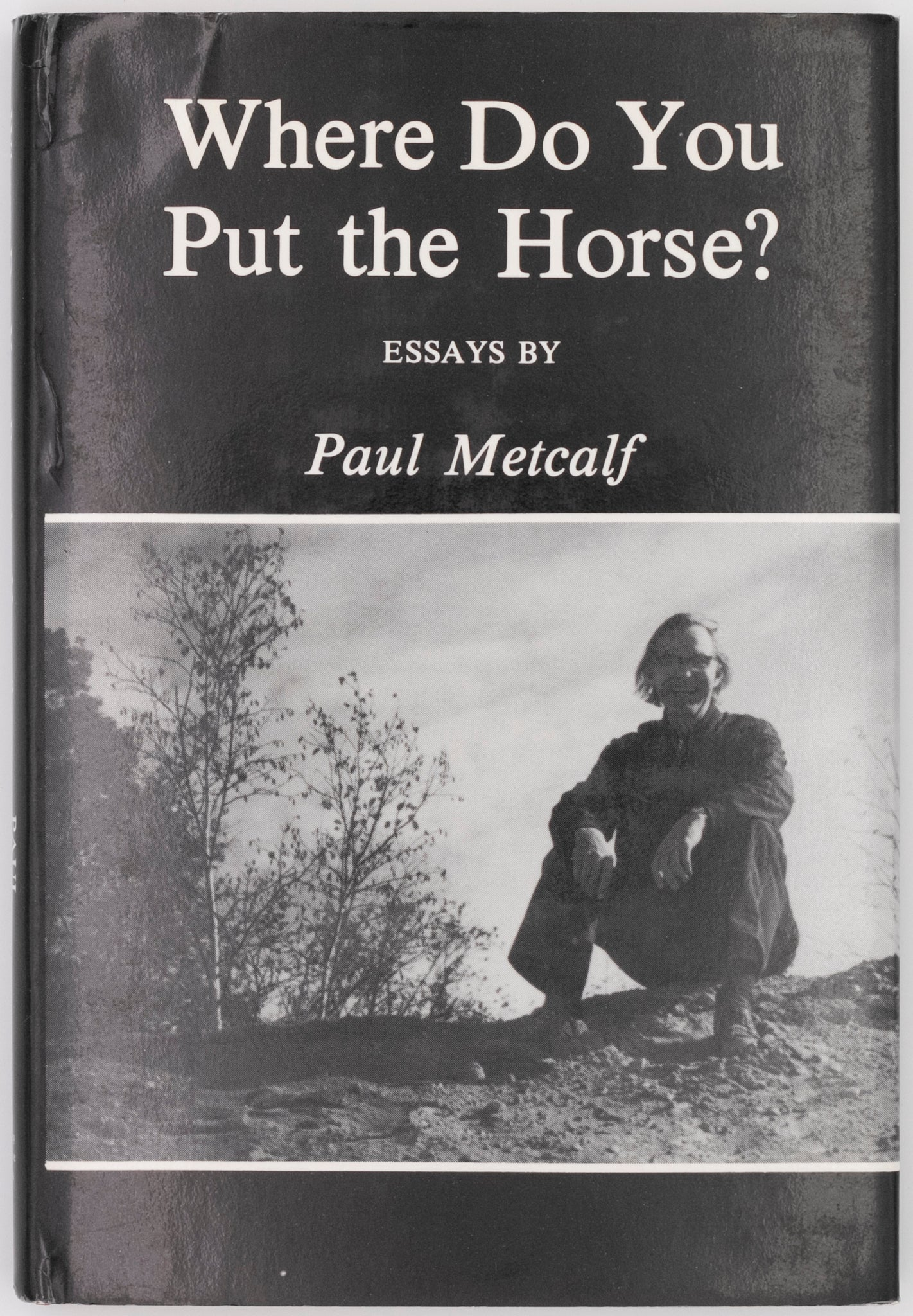 Where Do You Put the Horse? (Hardcover)