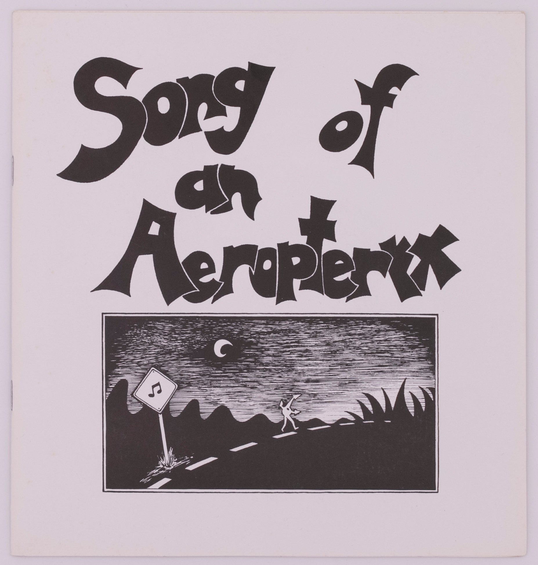 Song of an Aeropteryx