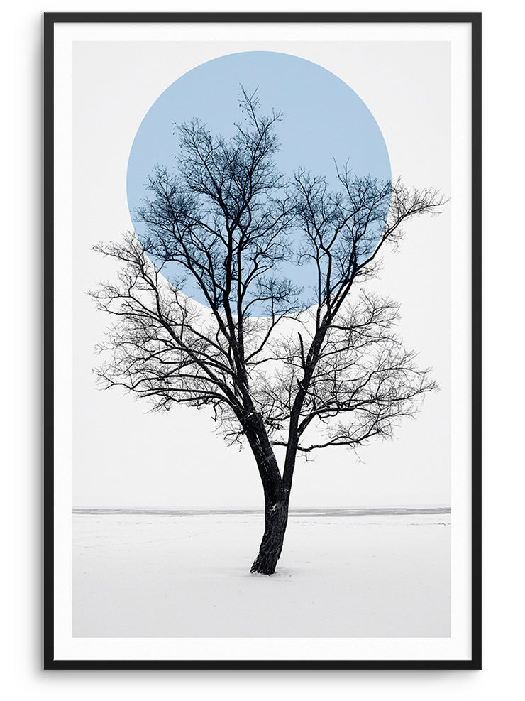 THE TREE - FINE ART POSTER