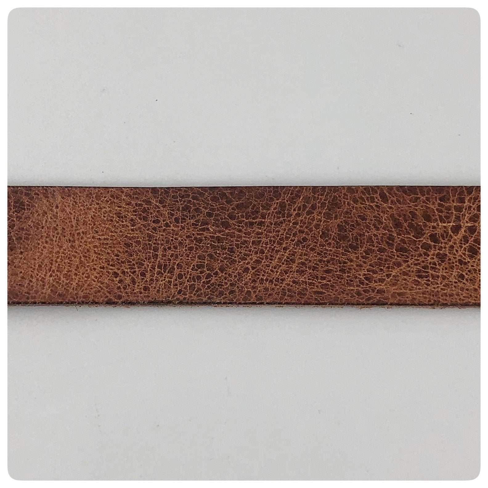 Replacement Leather Belt Strip for Oyster and Pea Crab Belt and Buckle, G2 Silver, Charleston, SC, New - The Silver Vault of Charleston