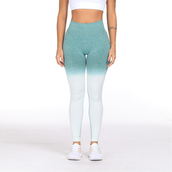 YogaSportWear Monique Shade Legging