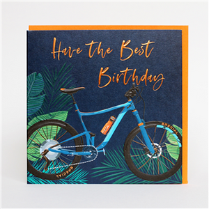 Have The Best Birthday - bicycle card