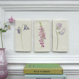 Aquilegia ceramic wall art