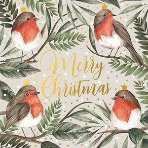 Robins Christmas Card pack