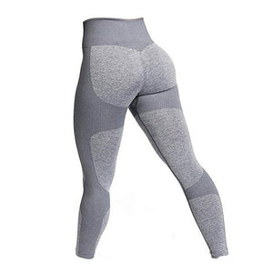 Womens High Waist Seamless Leggings - Iraniancinemachannel