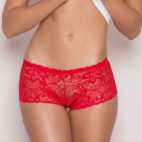 Seamless Lace Boyshorts - Mcburneyjunction