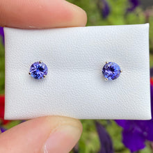Load image into Gallery viewer, Tanzanite Stud Earrings