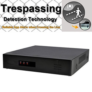 OWLTECH 4 Channel Trespassing Detection NVR up to 5MP Resolution + 4 POE built in Port + HDMI VGA BNC Output + True P2P Remote View for CMS IE APP