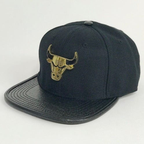 Pro Standard Chicago Bulls Hat (Black) PNCHIB0841