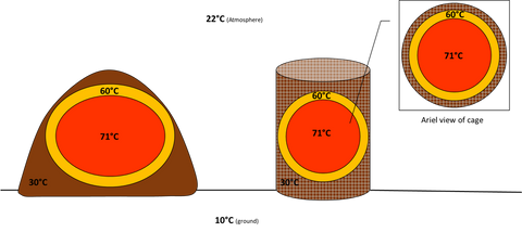 Diagram showing a cross sectioned thermophilic windrow (left) and a thermophilic cage with arial view (left).