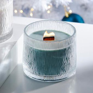 NATURE'S LIGHT™ BY PARTYLITE MOSS BIRCHWOOD JAR CANDLE
