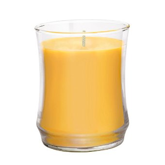 GOLDEN BIRCH ESCENTIAL JAR™ SCENTED CANDLE
