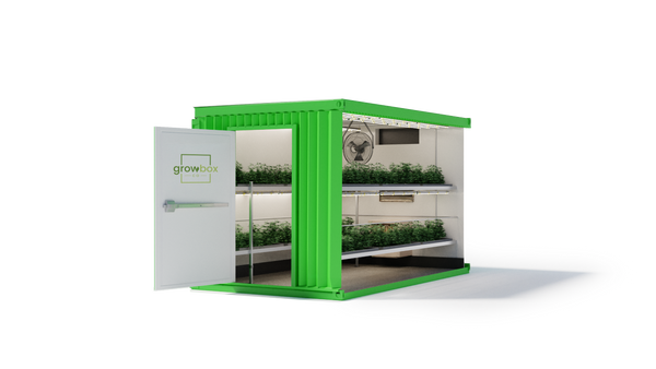 Standard 10 Ft Grow Box