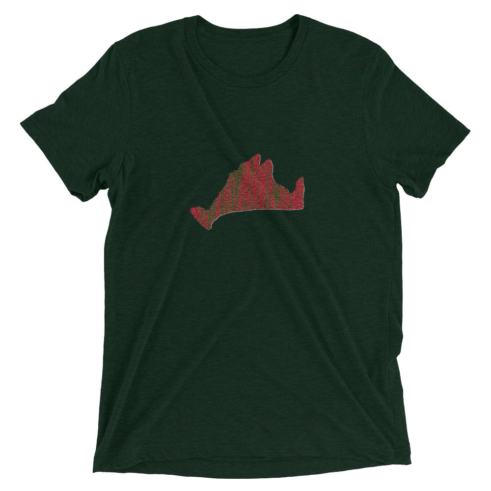 Short sleeve fitted Tee Shirt-Scarlett Green