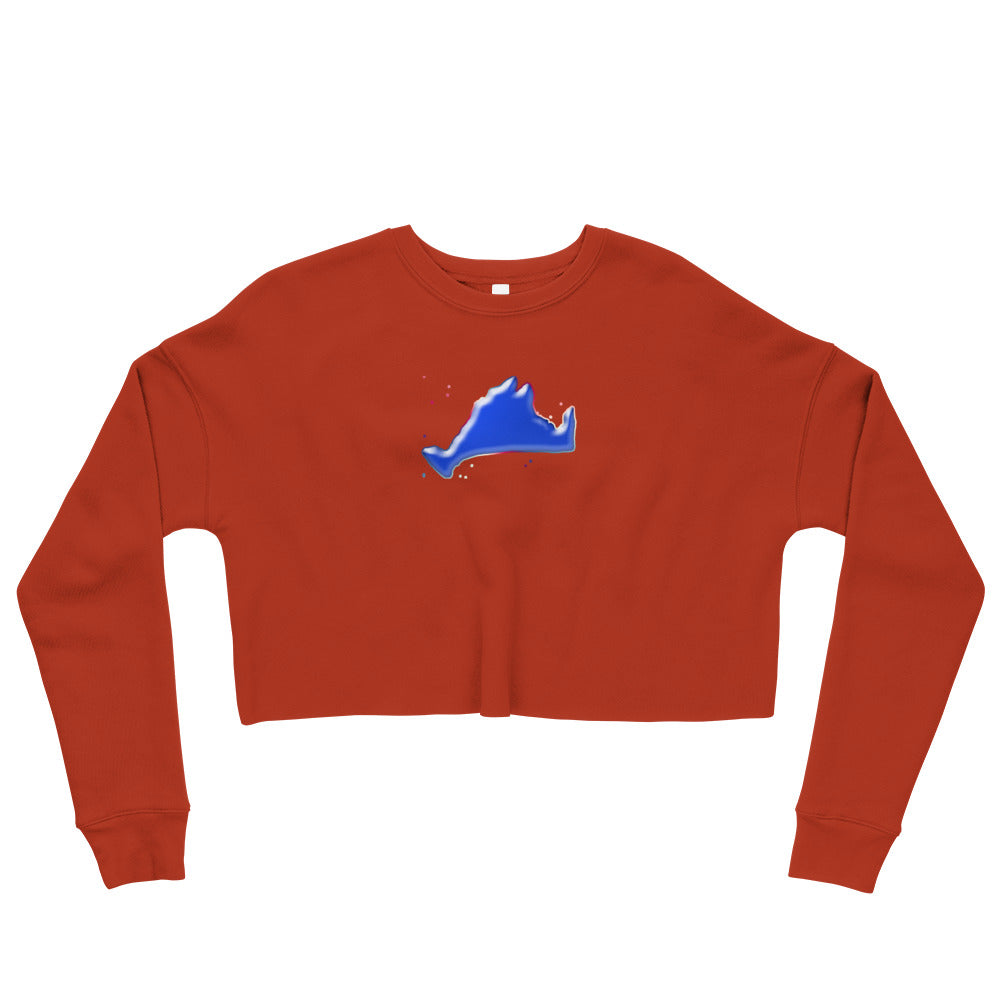 Cropped Sweatshirt-Blue Skies