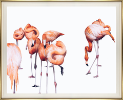 Photographic Print: Flamingo Dance