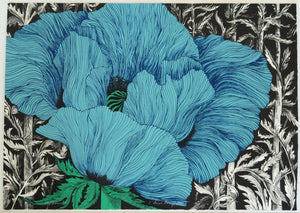 fine art print blue poppy