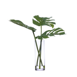faux palm leaves in glass vase with water like