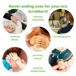 uses of ecojiko eco scrubbers