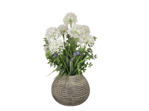 White Flowers in a Moroccan Pot