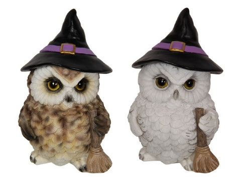 Owl Witch (17cm) 2 Assorted