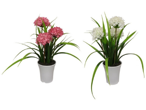 Flower in White Pot - Pink/White Flower (47cm)
