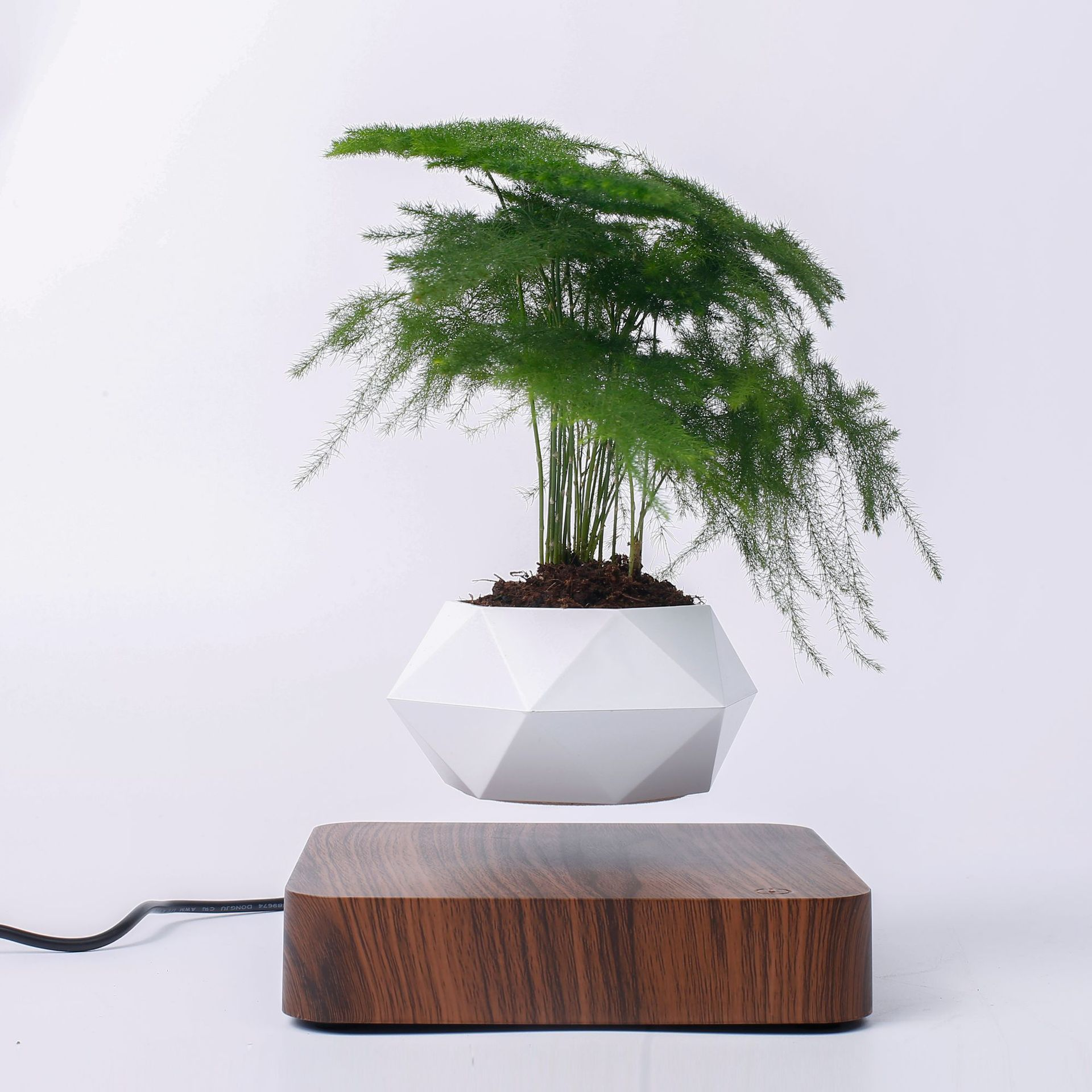 Levitating Desk Plant Pot - Glamorous Hangups Ltd