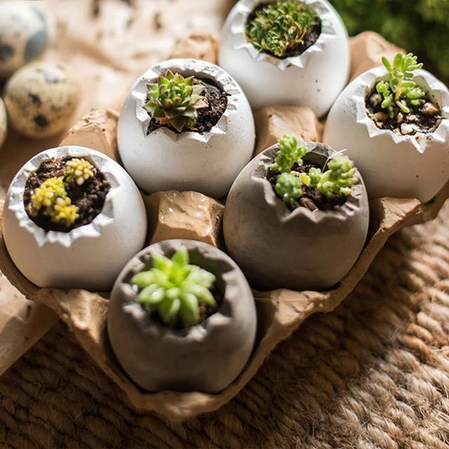 Egg Garden Succulent Tiny Planter - Glamorous Hangups Ltd