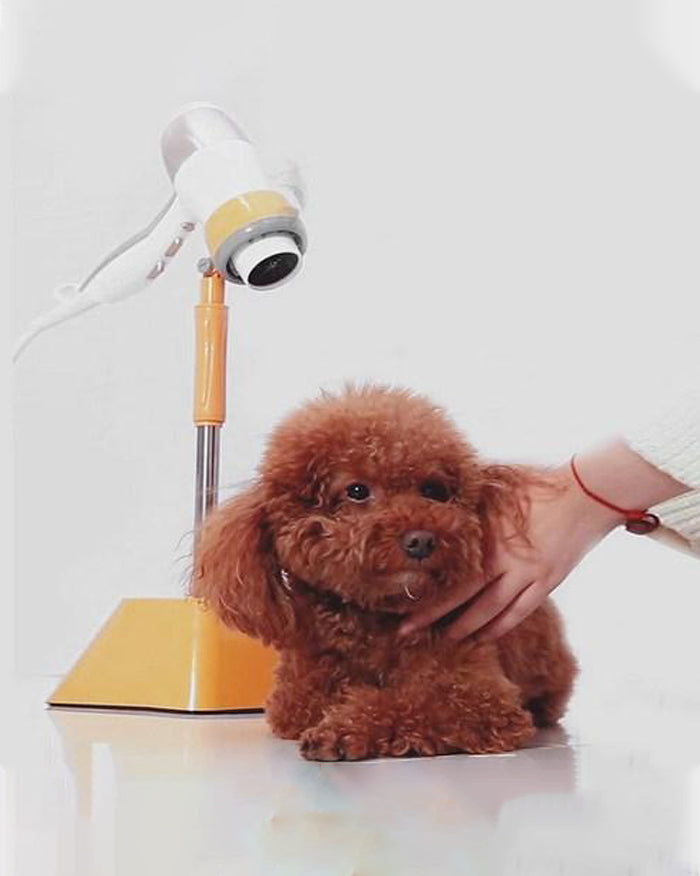 Hands Free Dog Dryer Stand (4713168535630)