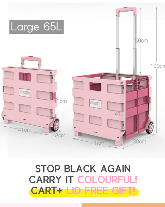 Coming Soon! Potable Folding Shopping Cart (4820282179662)