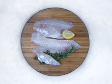 Load image into Gallery viewer, Fresh Tarakihi Fillets (1kg)