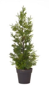 "18"" Cypress Potted Pine Tree"
