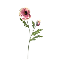 Load image into Gallery viewer, Pink Poppy