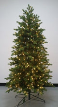 Load image into Gallery viewer, 12' Nordic Spruce