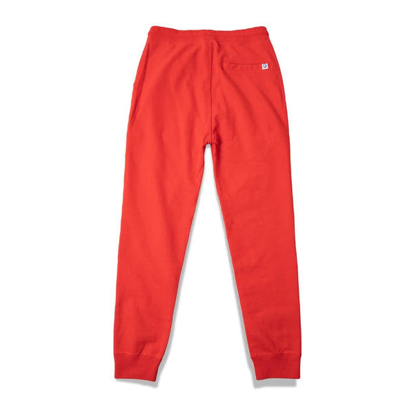 BB Large Astro Jogger