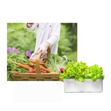 Load image into Gallery viewer, 5V PVC Grow Kit Hydroponic System Water Planting Grow Box Productive Vegetables Gardening Soilless Seeding Flower Stand - Eco Friendly Ecommerce Store