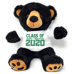 "Black Brown Colored College Graduation Personalized 16"" Teddy Bear Choose School Colors Personalized Name Class of 2020"