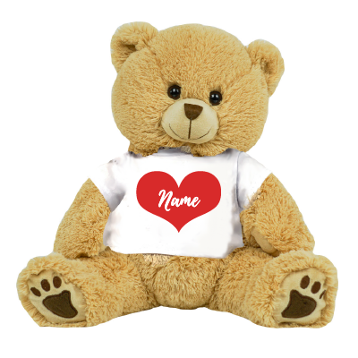 Choose Your Color Teddy Bear Personalized Name for Valentines Day Custom Gift for Girlfriend Boyfriend with Name on Shirt and Message