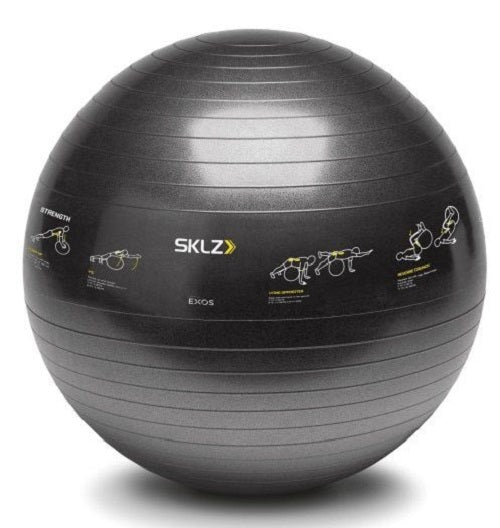 SKLZ Trainer Swiss Ball, 65cm (with exercise images)