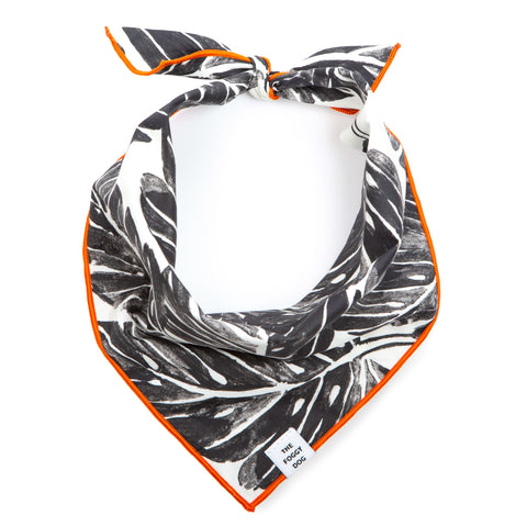 Patterned Dog Bandana