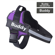 Load image into Gallery viewer, HarnessBuddy™ Personalized No-Choke Dog Harness - HarnessBuddy