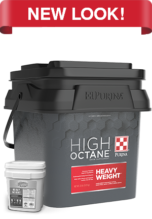 Purina High Octane Heavy Weight