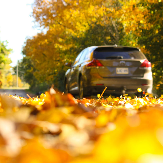 Video Distance Learning & In-Car Instruction: October 12, 4:30pm - 6:30pm